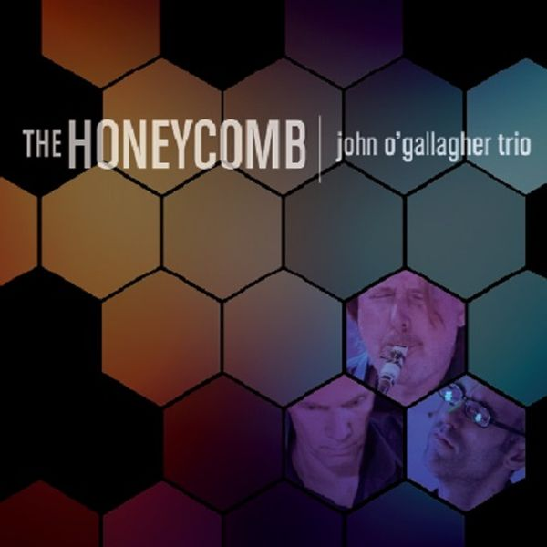 John O'Gallagher Trio / The Honeycomb